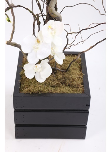Kibrithane Çiçek Yapay Ağaç Egzotik Dala Orkide Aranjman Kc00300018 Renkli